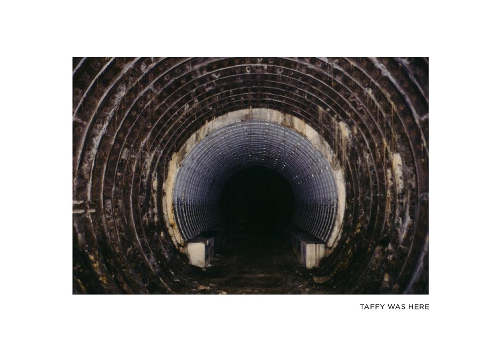 Taffy-Was-Here_Book_Spraydaily_01